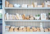 Domowa biblioteczka – zbieracz kurzu czy dekoracja?