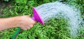 Oszczędzanie wody w ogrodzie - zadbaj o ekologię!